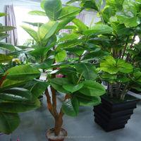 Q081103 guangzhou shengjie artificial plant decorative artificial oak bonsai tree