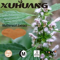 Chinese Traditional Medicine Motherwort Herb Extract Powder