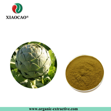 Supply Free Sample Artichoke Extract Cynarin 2.5% 5% UV