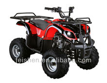 Mini ATV quad 110cc quad ATV(FA-D110)