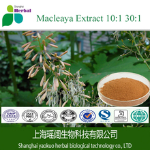 Natural Sanguinarine macleaya cordata extract powder / macleaya cordata powder /Free sample macleaya cordata extract