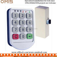 Lock Manufacturer Developed High Quality Electronic