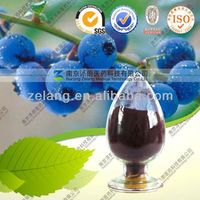 Anthocyanin CAS 84082-34-8 Blueberry Extract