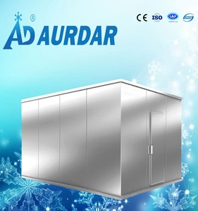 Accept customized walk in freezer storage cold room