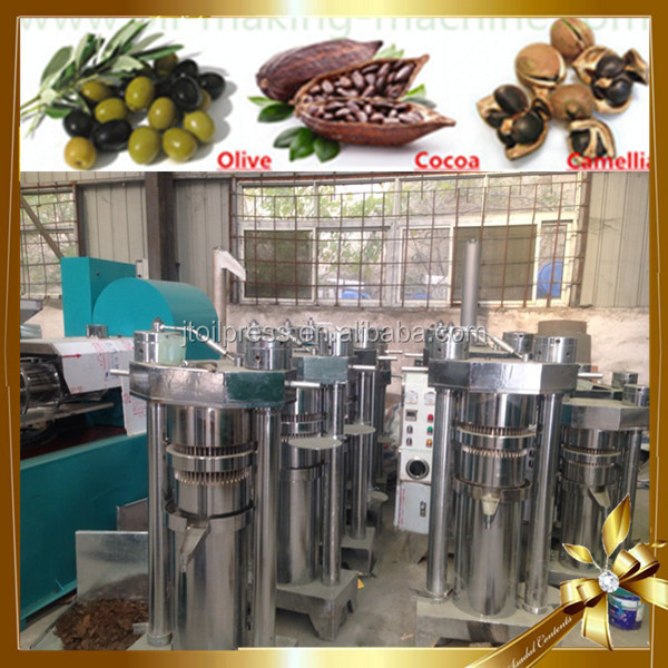 India good price 15 kg each time nut linseed olive oil making machine
