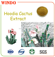 Factory Supplied Hoodia Cactus Extract, Hoodia Cactus Pure Powder with High Quality