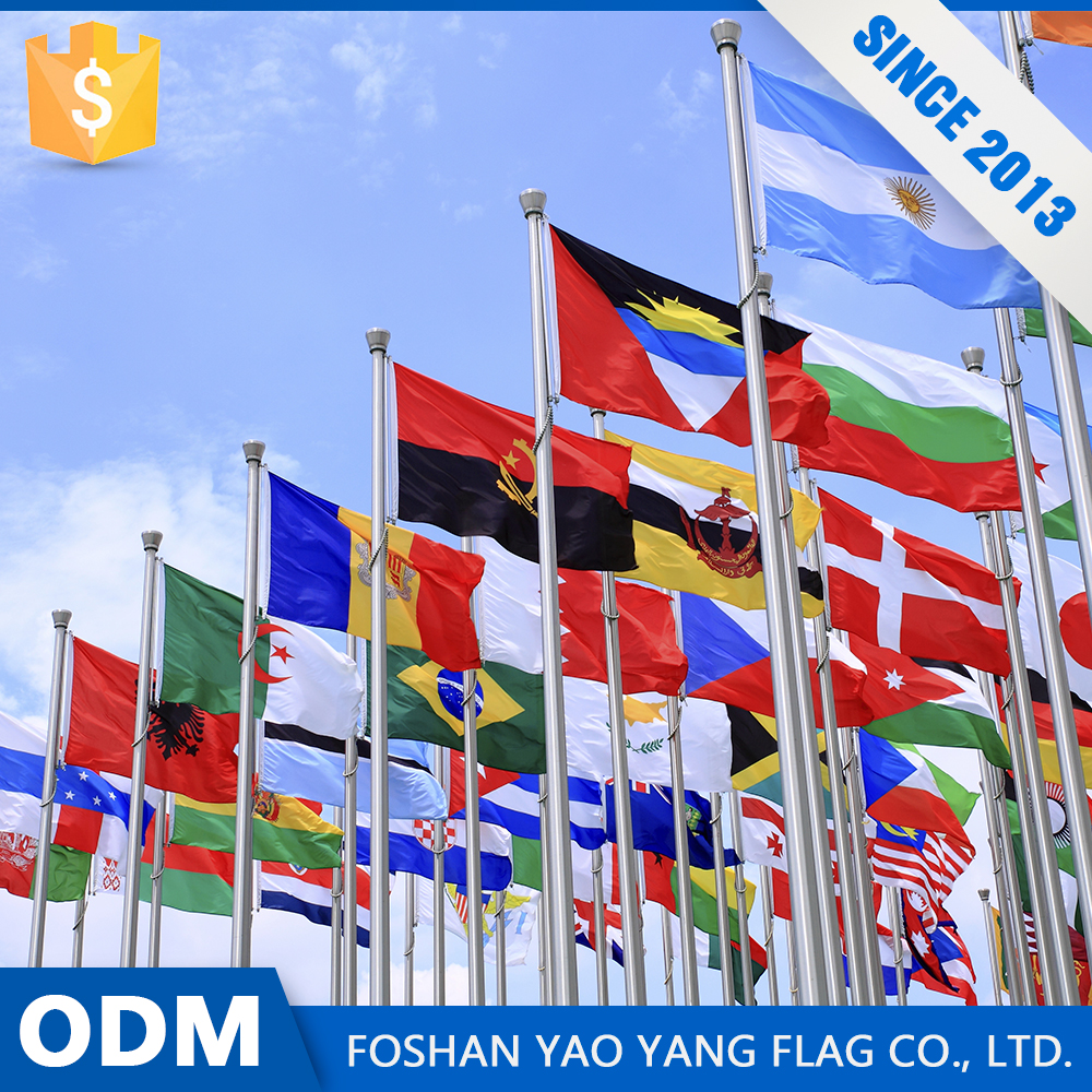 Direct Buy China Bargain Sale Custom Cheap Wholesale The World Flags