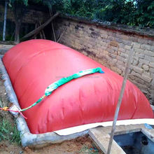 China small mini home biogas fired steam boiler plant digester bag balloon tank