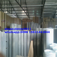 Holland Electric Welded Wire Mesh Hot sale have stock price list-----LIGEDA
