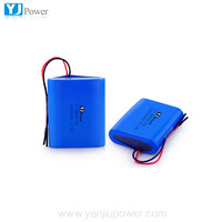 CE certificated Top selling 18650 high capacity 2400mah 11.1v rechargeable li-ion battery