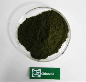 Health Care Products Chlorella Powder in Bulk