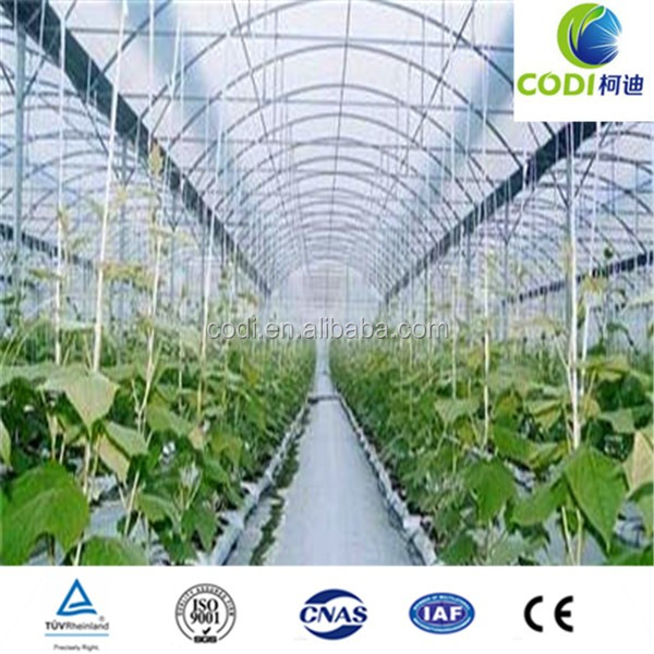 Professional top quality industrial film greenhouse for sale