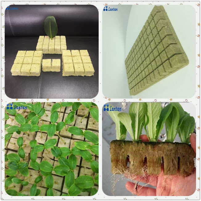 Manufacturer export Agricultural hydroponic rock wool cubes with best price