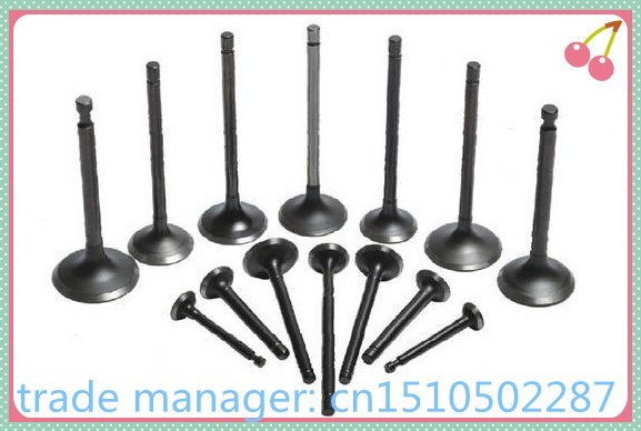 Hafei Minz intake and exhaust valves