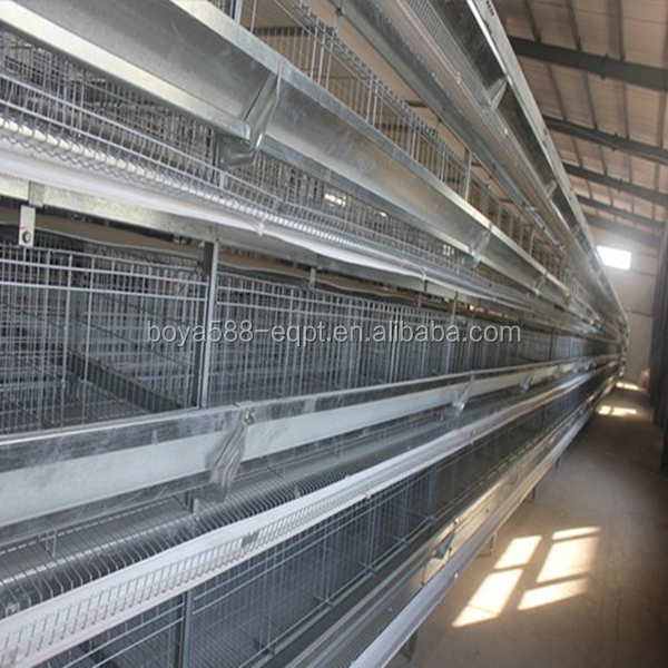 Advanced design cheap chicken battery cage for broiler and egg layer chicken