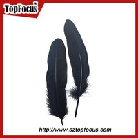 hot sale home decor black natural goose feathers for shuttlecock for sale