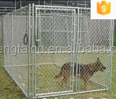 large dog kennel house