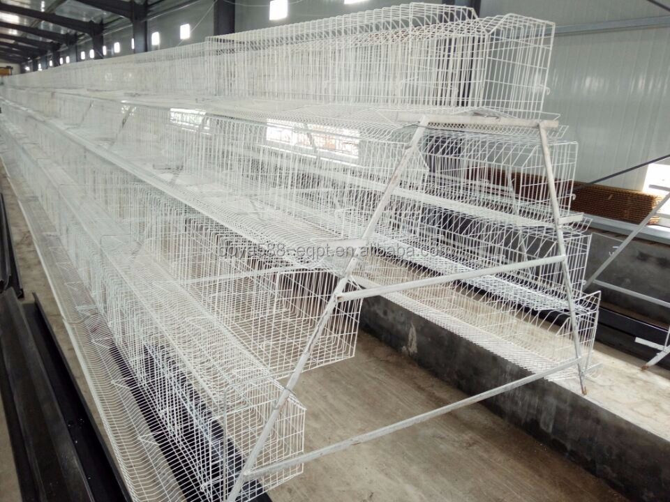 Hot/ cold galvanized welded wire chicken breeding cages for sage