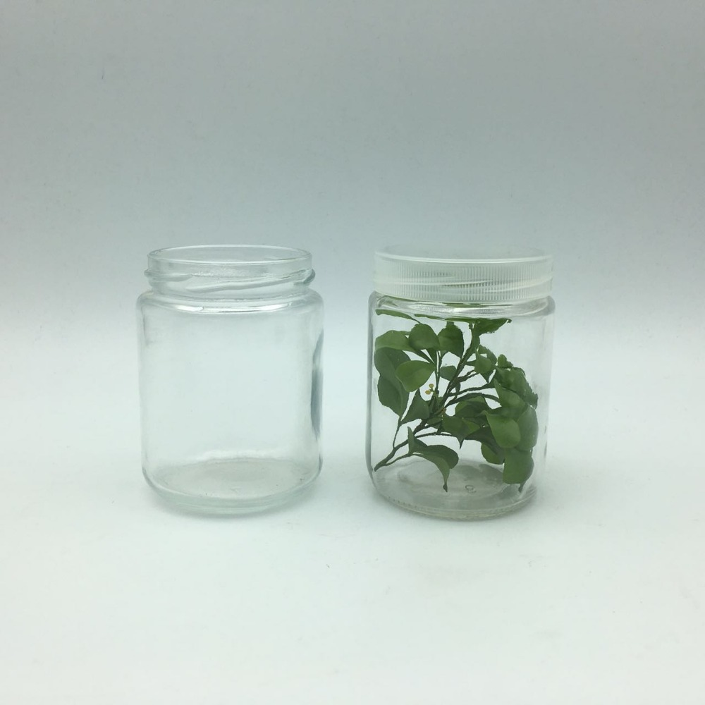240ml 8oz glass vessels for plant tissue culture laboratory equipment jar/ bottle