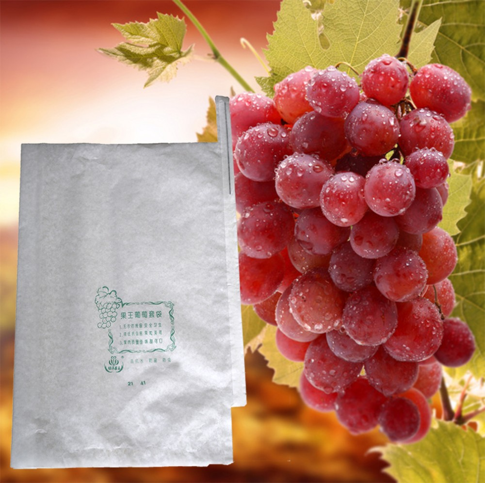 grape protection bag grape packaing bag grpae growing paper bag