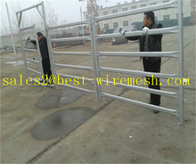 pipe corral fence panels/galvanized pipe horse fence panels
