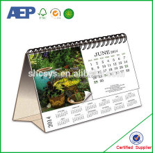 New year desk standing chinese desk calendar