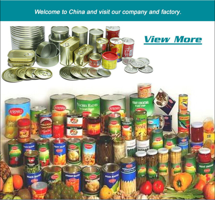 Food exporter export of agriculture products best sell product canned water chestnut