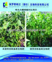 Biological organic bacterial fertilizer for supply soil organic matter