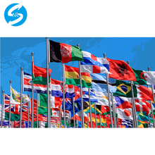 Wholesale Price Any Size Different Kinds of Materials Outdoor Decoration Custom Printed Flag