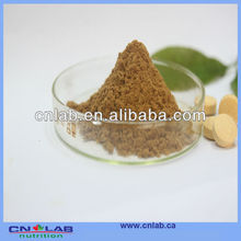 GMP/Haccp/ISO9001 Factory Provide 100% Natural Powdered Black Cohosh Root in High Quality
