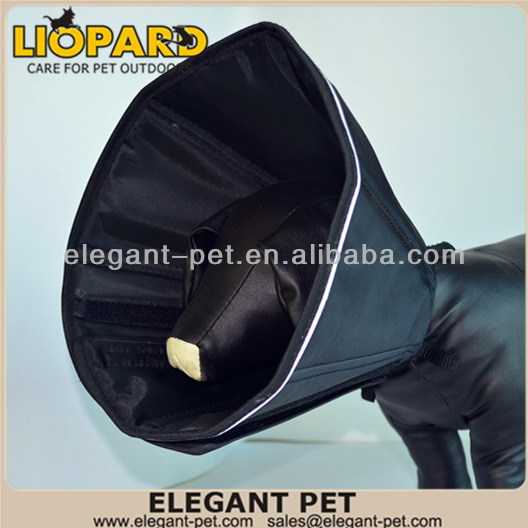 Top grade best sell adopt dogs puppies