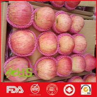 export fresh red delicious apple fruit fresh qinguan apple