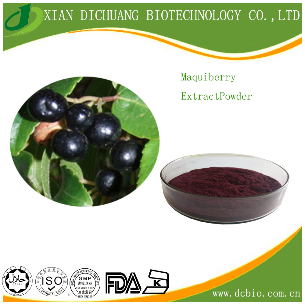 100% Natural fresh Maquiberry Extract Powder 25% anthocyanin