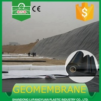 Best Price HDPE Black Rolls Geomembrane 2mm HDPE Pond Liner