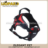 Fashion discount high-end dog harness