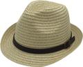 T50-27AFashion Style Cheap Wholesale Paper Hat Fedora Hat