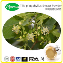 Pure natural Tilia Platyphyllos Extract/Tilia Platyphyllos Flower Extract/Tilia Platyphyllos Plant Extract
