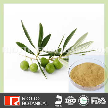Best Price Oleuropein Extract 20%-98% Hplc Olive Leaf Extract