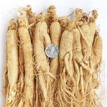Ren shen Chinese Herbal Medicine Natural Dried panax ginseng root