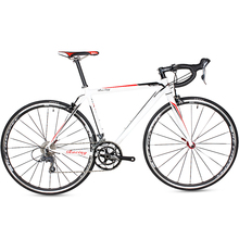 All chinese manufacturer cheap 700C aluminum alloy single speed road bike