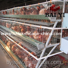 China wholesale custom wooden chicken layer cage