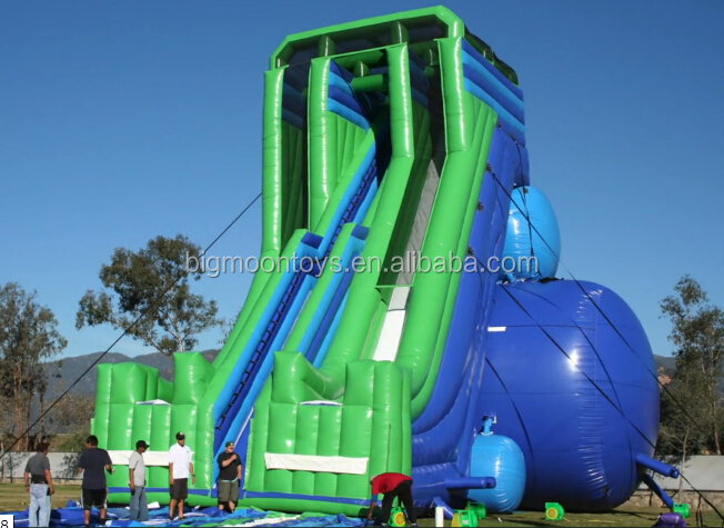 Hippo inflatable water slides with pool for party and events,cheap inflatable slide