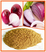 Free Sample 100% Natural Oion P.E. Onion Extract Quercetin