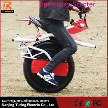 China Professioanal Manufacturer Freego 200W Electric Speedway Scooter