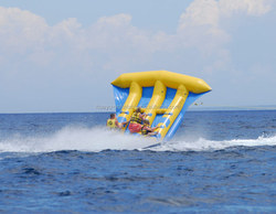 Customzied logoof inflatable fly fish toy /fly fish banana boat/water games flyfish