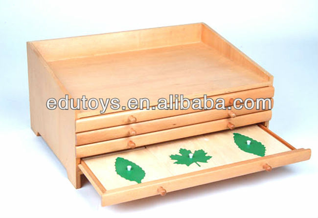 Beech Wood Toys Montessori Botany Puzzles Wooden Material Montessori Toys