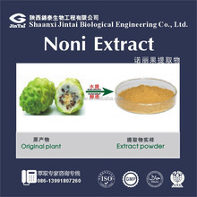 anti-aging noni fruit extract powder water soluble