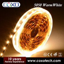 Decoration Lighting Warm White UL Listed 5050 2835 3528 IP68 Waterproof Flex Led Strip