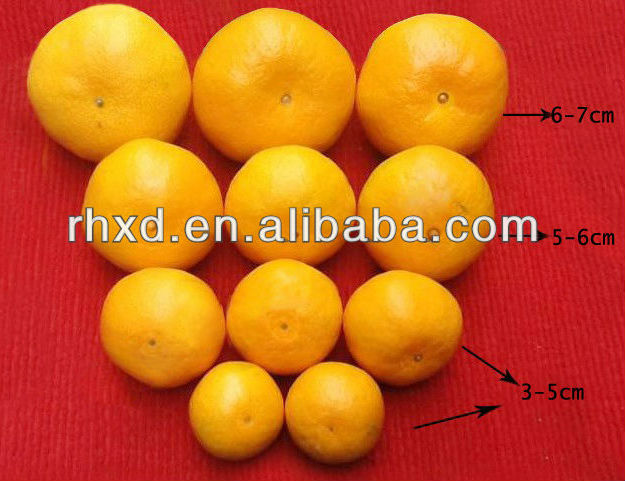 China yellow <strong>fruits</strong> orange