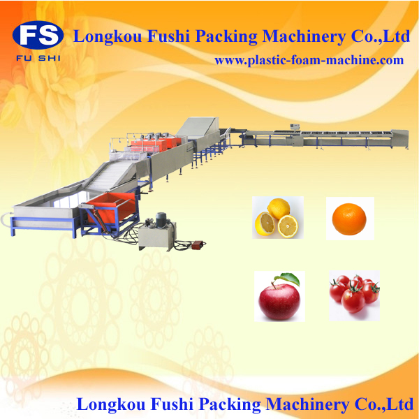 electronic mango grading machine